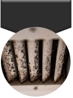 Air Duct Mold Removal in Harrisburg, Lancaster, Reading, PA, York, PA,